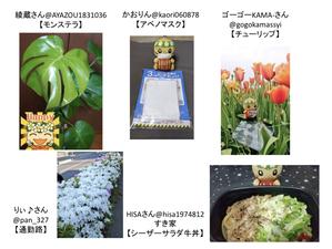 IMG_3140 (1).jpg